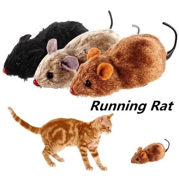 Plush Toys, Funny, cattoy, Toy