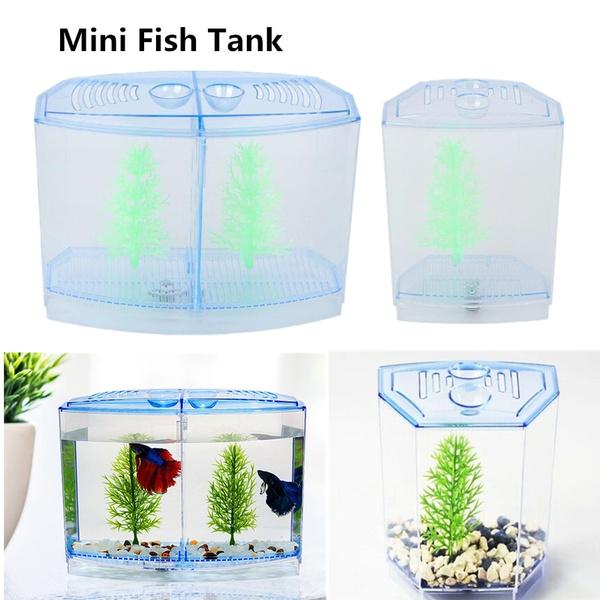 Box, Tank, fish, breedingbox