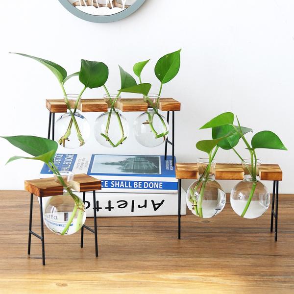 Plants, Flowers, glassplanterbulbvase, Garden