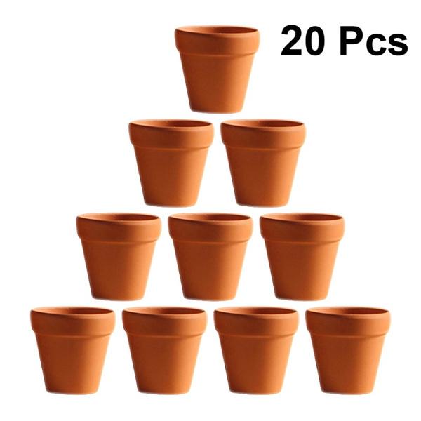 Flowers, succulentplantspot, smallplantpot, Pot