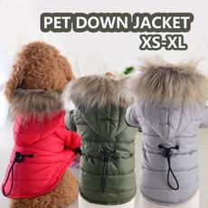 Fashion, fur, Winter, Pets