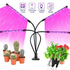 Plants, led, hempseed, lights