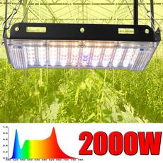 Plants, led, Gardening Supplies, growinglamp