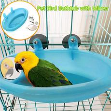 Shower, bathtub, Parrot, Pets