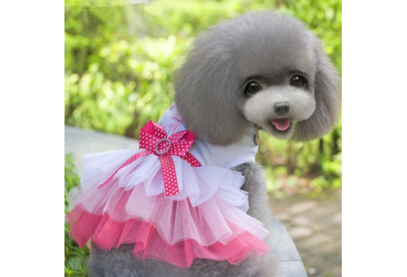TM Spring Summer Pet Dog Cat Puppy Tutu Princess Dress Heart Printed Lace Skirt Clothes Pet Apparel Idepet
