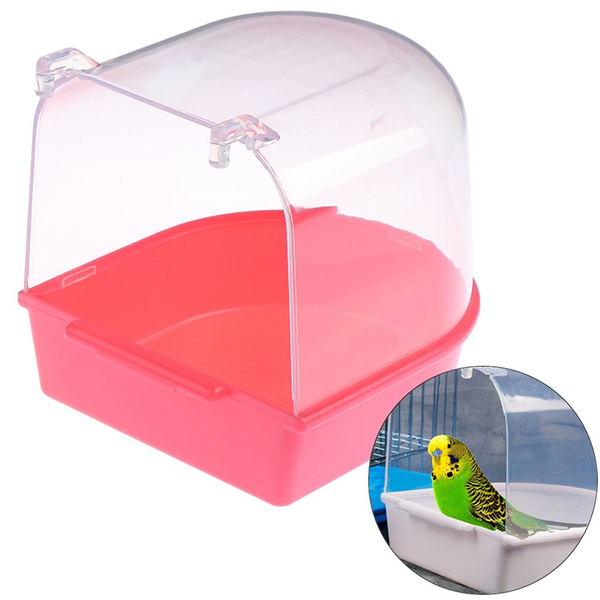 Box, bathtub, Parrot, for