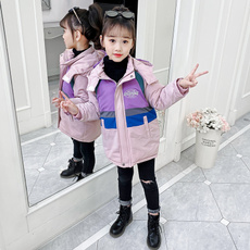 padded, Winter, Cotton-padded clothes, New pattern