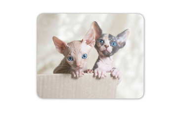 cute, mousematpad, Mats, Gifts