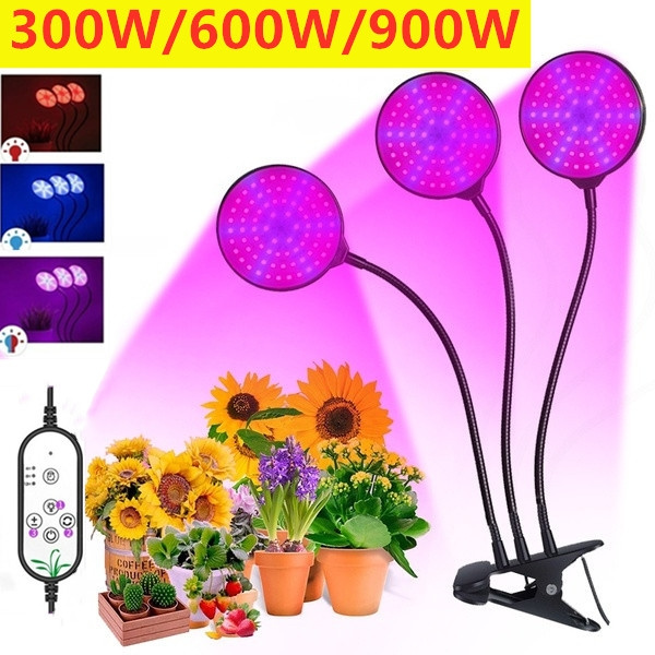 Plants, Interior Design, hydroponiclight, Gardening Tools