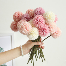 decoration, hydrangeaflowerball, Flowers, dandelionflower