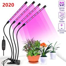 Plants, led, lights, Indoor