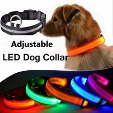 led, Pets, lights, Dogs