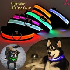 led, Pets, lights, Safe