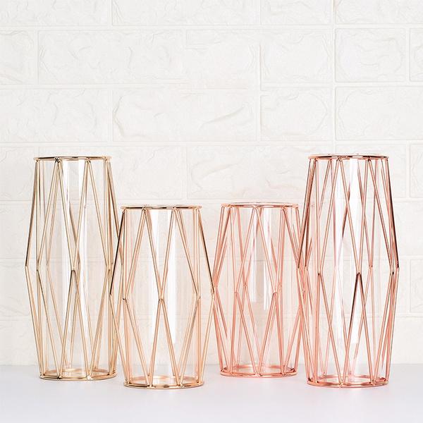 Bonsai, Plants, Home Decor, transparentvase