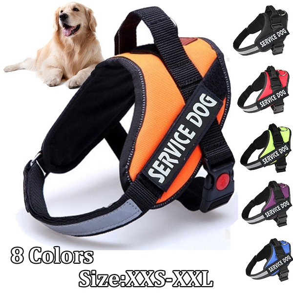 Training, dogleadleash, Pets, Pet Products