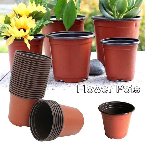 Decor, Flowers, Gardening, planter