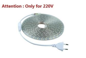 LED Strip, led, waterproofledlight, (220V)