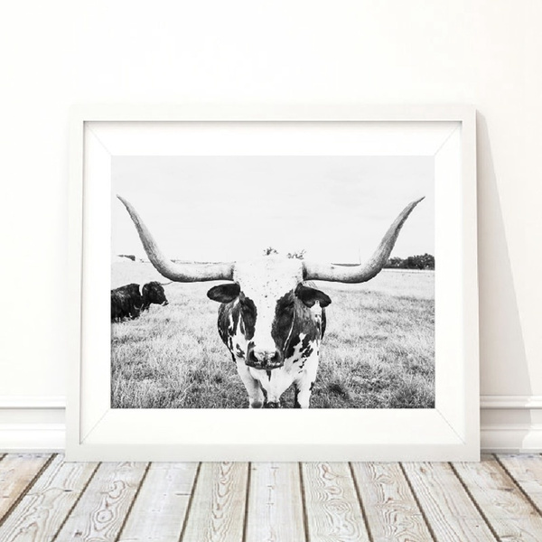 Beautiful, cow, Decor, Fashion