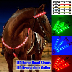 horse, horseriding, led, petaccessorie