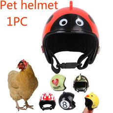 Funny, chickhat, pethelmet, Helmet