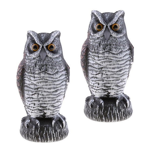 Owl, Outdoor, Garden, aspictureshown