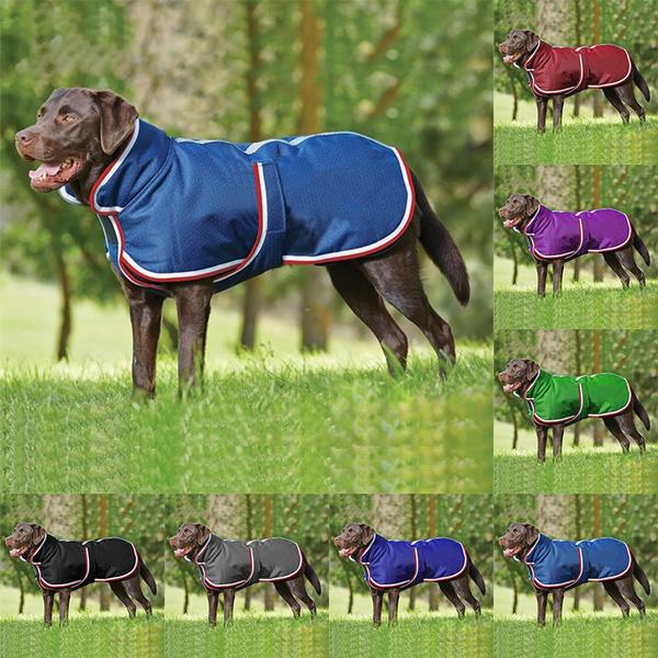 Vest, Fashion, Waterproof, Spring