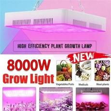 Plants, indoorcultivation, plantfilllightlamp, soillesscultivation