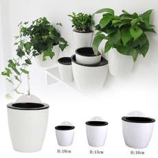 Plantas, Garden, Wall, Pot