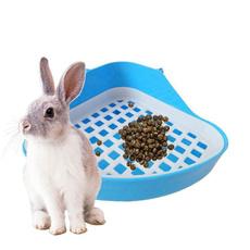 hamster, rabbit, Animal, Pets