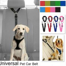 Fashion Accessory, Fashion, Pets, Cars