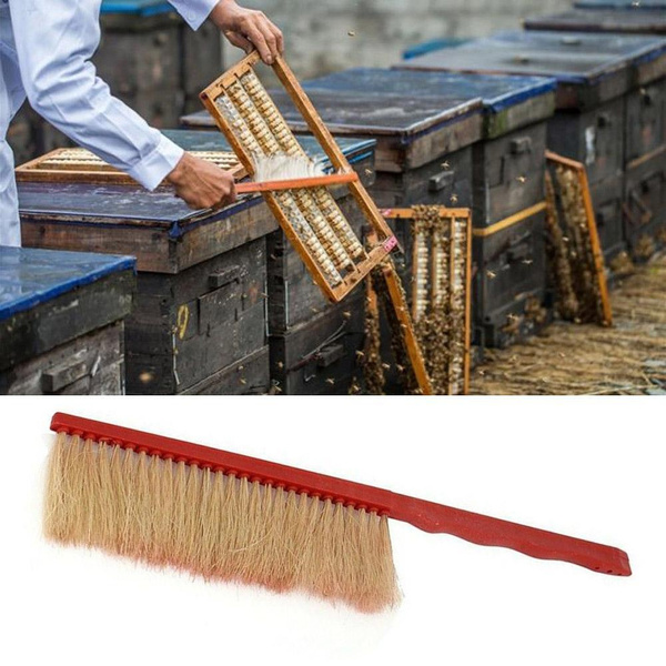 beekeeping, beebrush, beesweepbrush, Tool