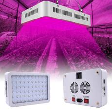 indoorplantlight, Plants, led, indoorplantlamp