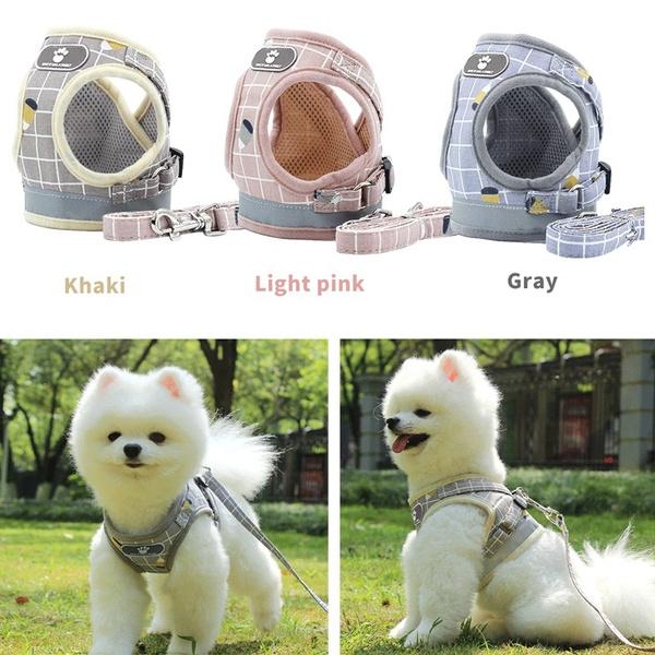 petdogharnesschest, plaid, puppy, Dogs