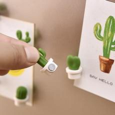 Decorative, succulent, Plants, cute