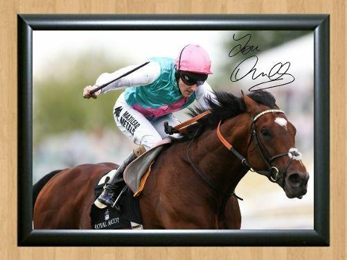 horse, namephotoidprint, namechristmasgiftidphoto, nameautographedidchristmasgift
