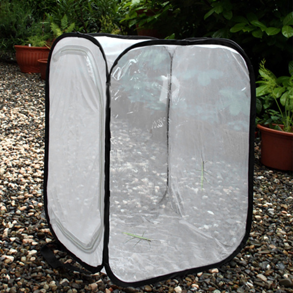 butterfly, habitatcage, collapsible, portable