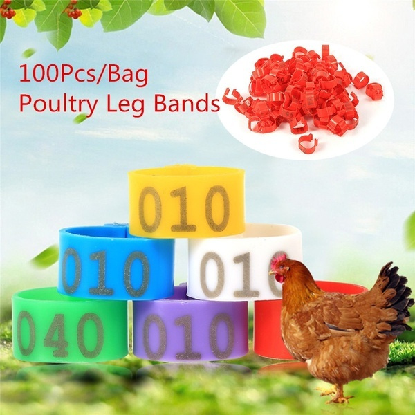numbered, chickenlegring, ducklegring, poultrylegband