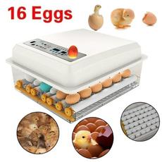 Mini, eggmachine, poultryhatcher, incubator