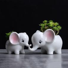 cute, Plants, Flowers, Meat