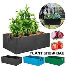 Box, planting, Plants, Flowers