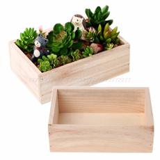 Box, succulent, Plants, Flowers