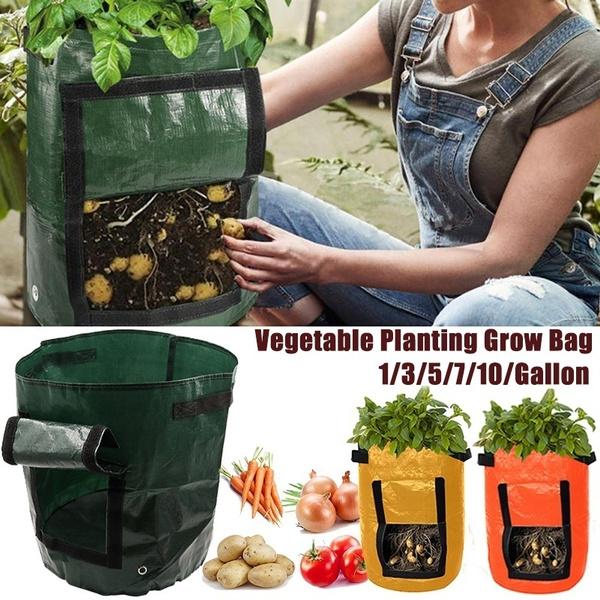 Plants, Garden, Bags, potatobag