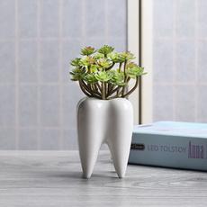 Mini, Plants, Flowers, Garden