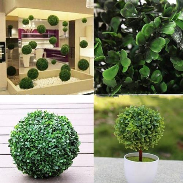 decoration, Plants, Outdoor, Home Decor