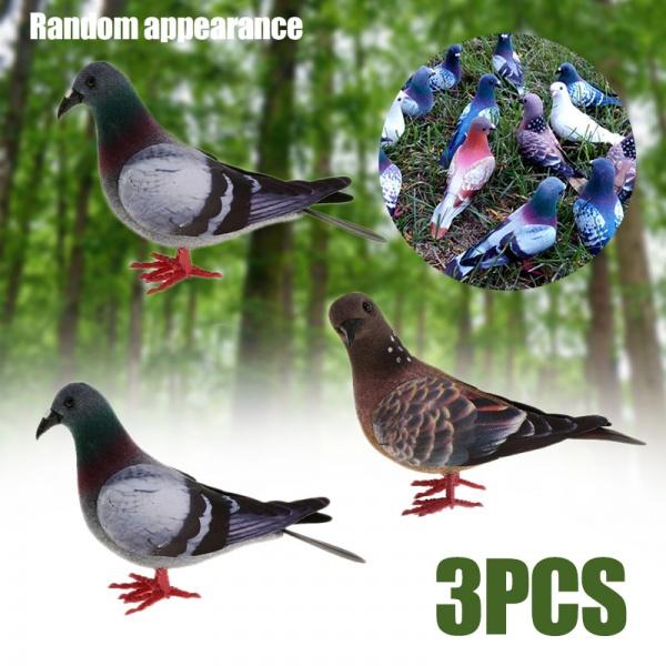 simulationbird, fakepigeon, Garden, simulationpigeon