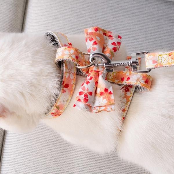 petharne, Dog Collar, dogleashesandcollar, petharnessandleashset