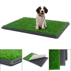 puppy, doggrasspad, pottytrainer, Pets