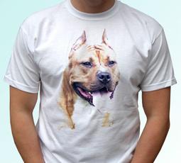 kids, Fashion, Cotton Shirt, Slim T-shirt