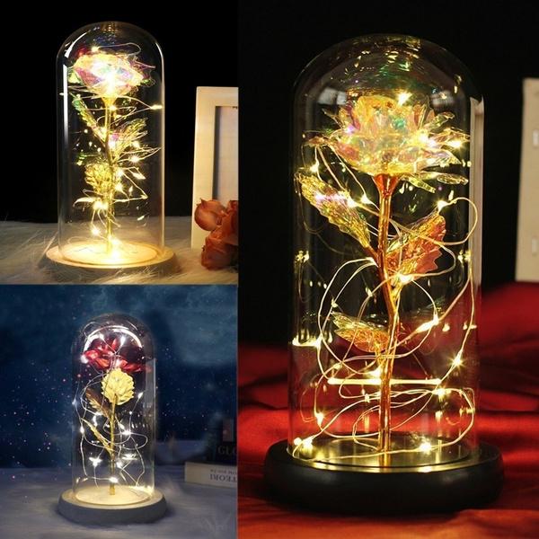 White Gold, Flowers, flowerwithglasscover, whitegoldrose