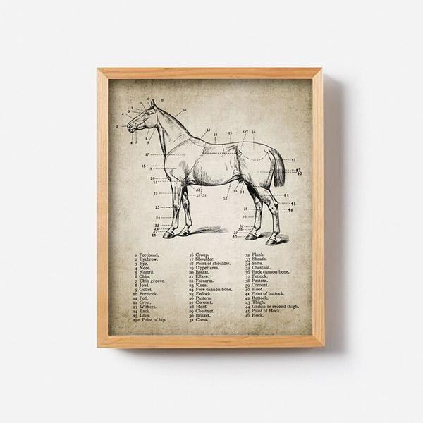 bardecorationposter, horse, muraldecal, Home & Living
